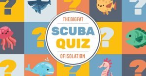 The Big Fat Scuba Quiz Of Isolation