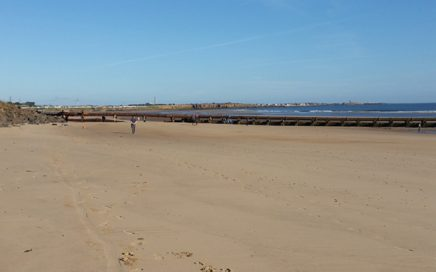Cambois beach appears clean, but actually that's not the case