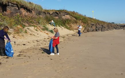 Volunteers carefully climb into the dunes to remove litter