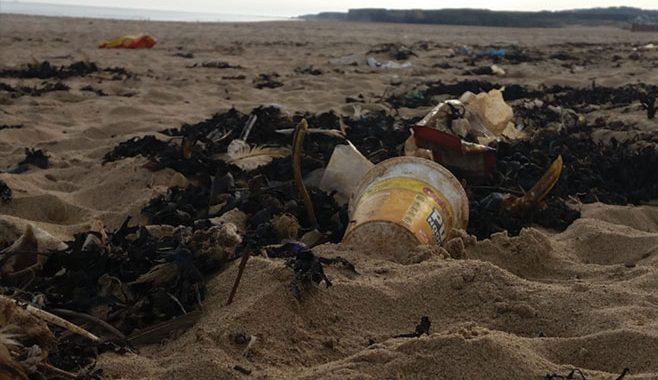 Litter at Sandhaven