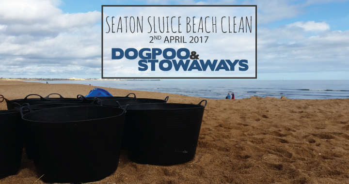 A beautiful day for a beach clean!