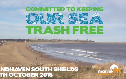 Our beach clean was featured in the South Shields Gazette
