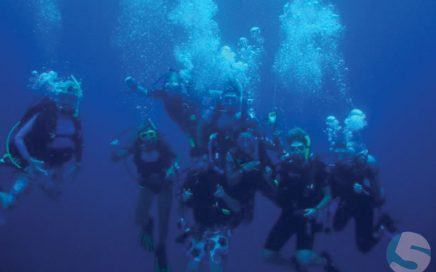 The Andros Dive Crew