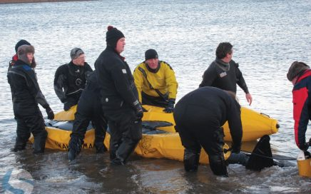 BDMLR training course - refloating whales and dolphins