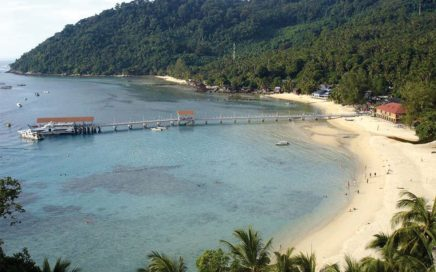 Clear water, white sandy beaches and dense rainforests