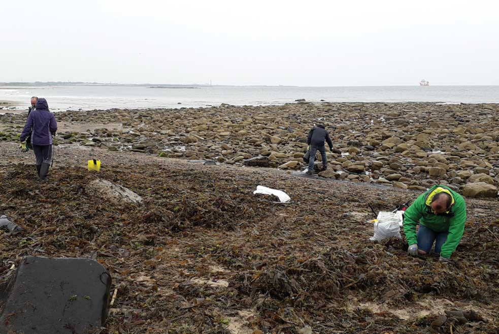 Volunteers on their hands and knees looking for microplastics during a beach clean