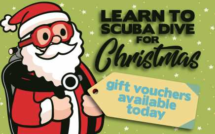 Christmas Gift Vouchers Scuba Diving