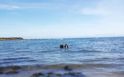 Shore dives in Beadnell