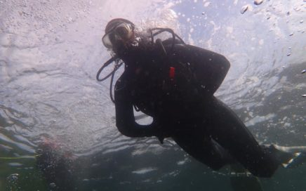 Scuba diver in Eyemouth