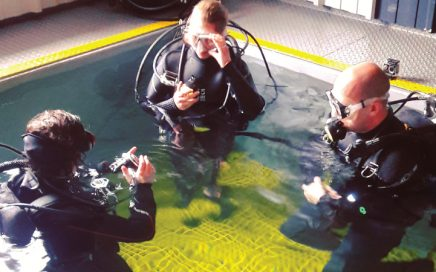 Why we don't offer a diving internship at The Fifth Point