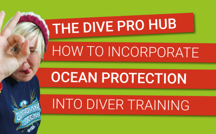 5 ways to include ocean protection in scuba diver training