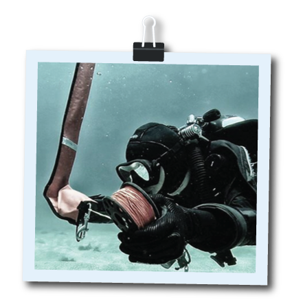 PADI Drift Diver Speclaity Course