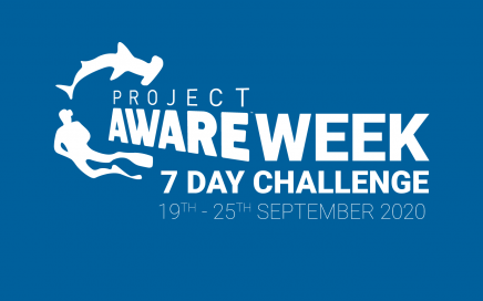 Project AWARE Week 7 Day Challenge