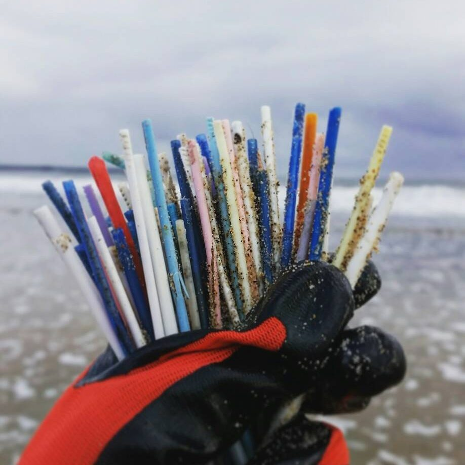 Cotton bud sticks collected from Blyth Beach
