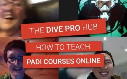 Teaching PADI online