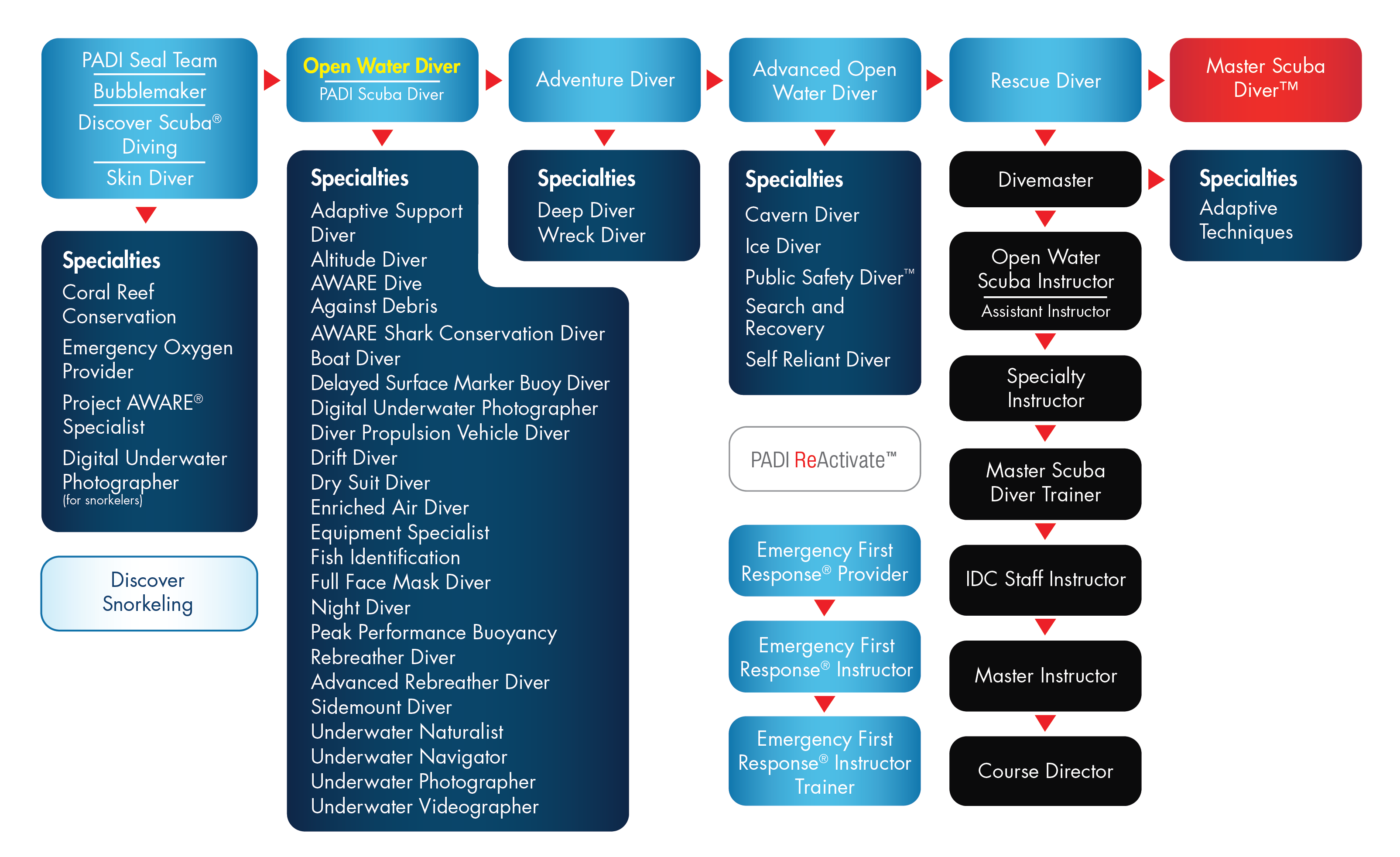 Flowchart showing the levels of PADI certification
